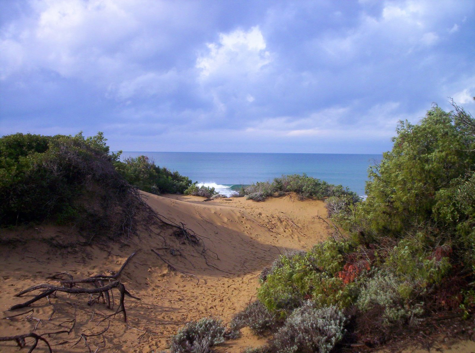 estate nei parchi 2015 parchi e aree protette ambiente