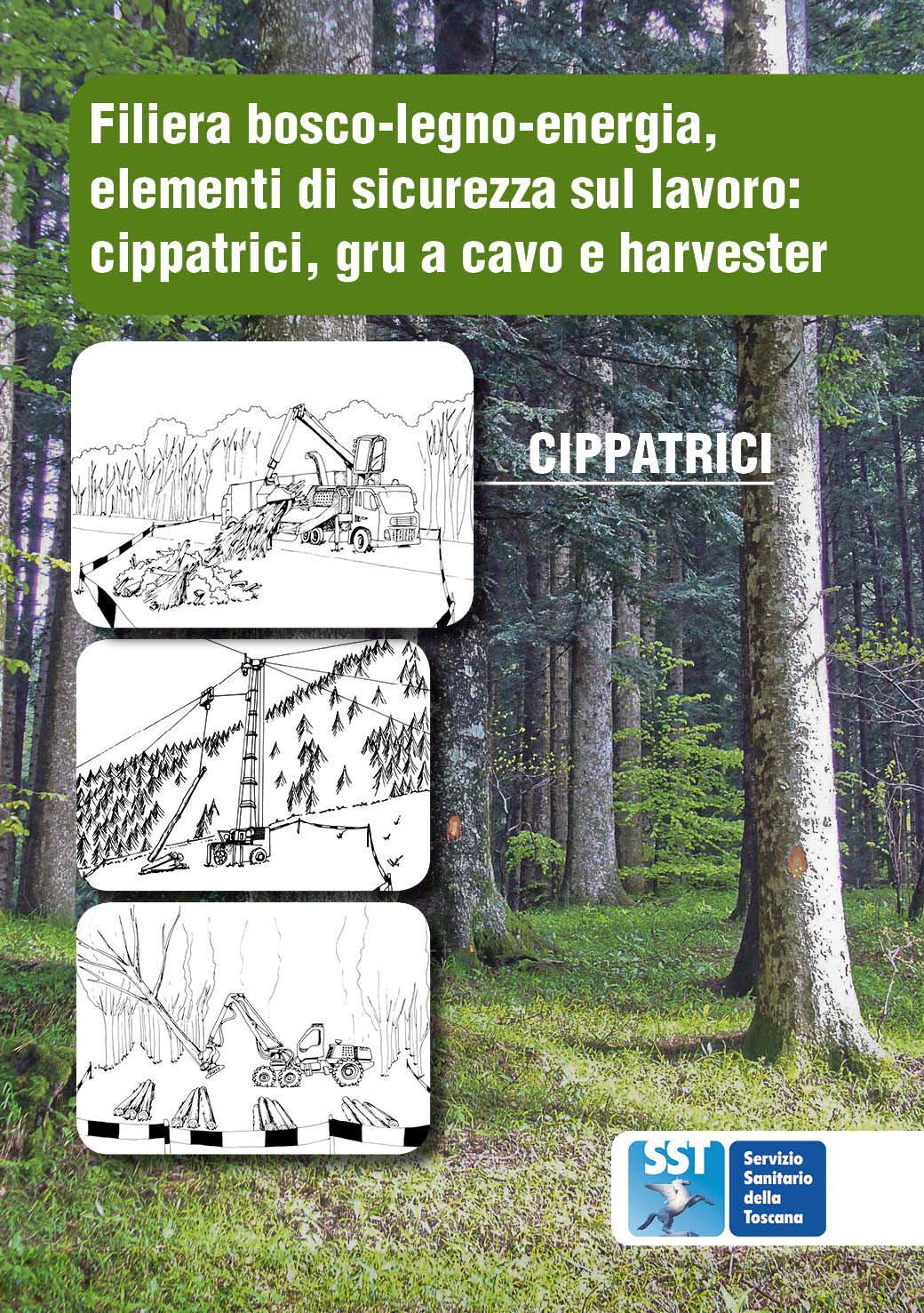 Filiera bosco legno energia elementi di sicurezza sul for Legno arredamento trova lavoro in toscana